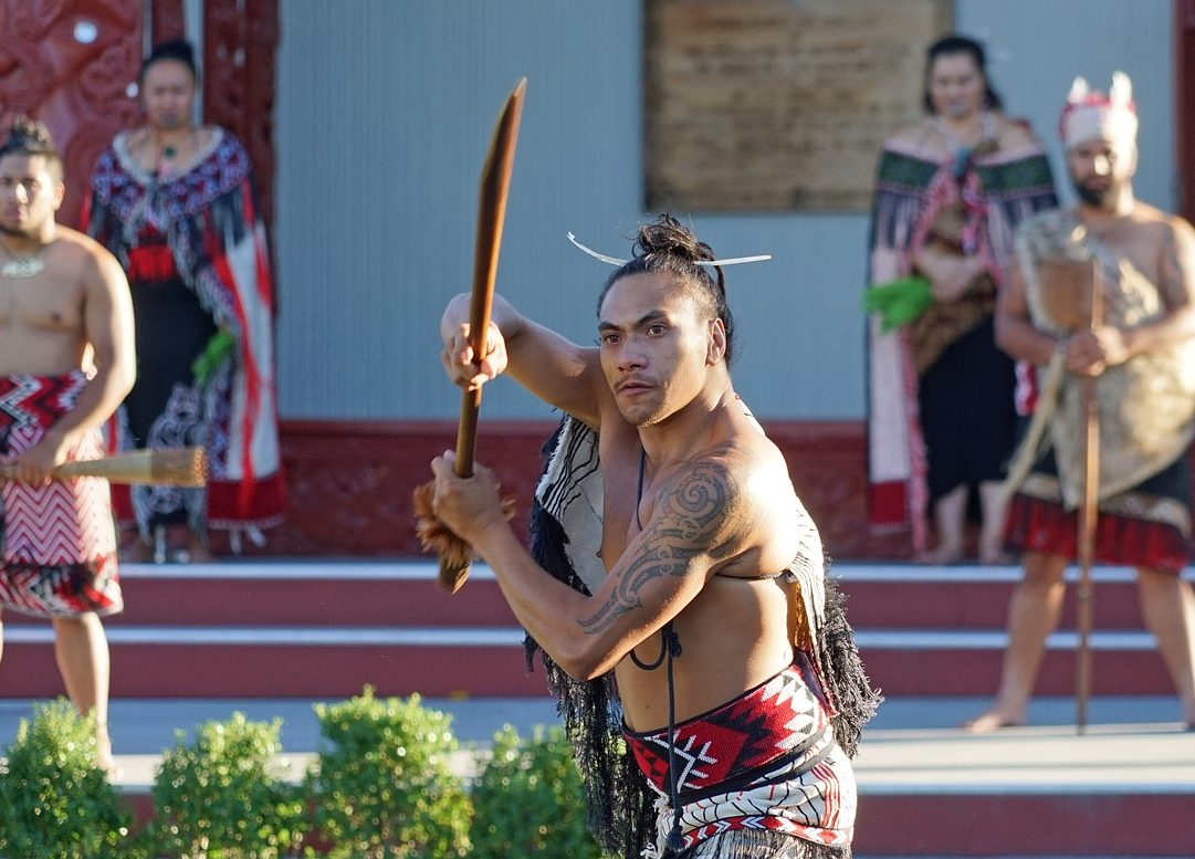maori health care in new zealand Guidelines for cultural safety, the treaty of waitangi and maori health which ensures safe and competent care for the public of new zealand.